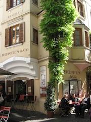 """Bozener Gasthaus: nter dem Titel """"Goldener Herbst"""" bieten 15 Bozner Restaurants von Anfang Oktober bis Mitte November ihre Spezialitäten und lokale Gerichte der Saison an, Foto: Heiner Sieger"""