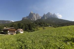 Frische Bergluft und herrliche Panoramen gibt es beim Törggelen kostenlos dazu, Foto: Roter Hahn