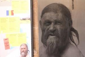 Noch ein jahr zu besichtigen: Eismann Ötzi im Bozener Archäologiemuseum, Foto: Heiner Sieger