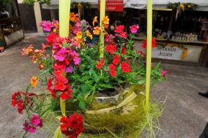Am Bozner Frühlingsmarkt gibt es neben frühlingshaftem Blütenzauber Kostproben aus der heimischen Gastronomie und Patisserie.