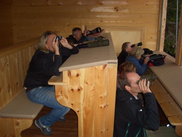 Wildbeobachtung im Latemarforst, Foto: Eggental