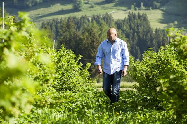 Stefan Gruber: Vom Milchbauern zum Fruchtveredler; Foto:smg
