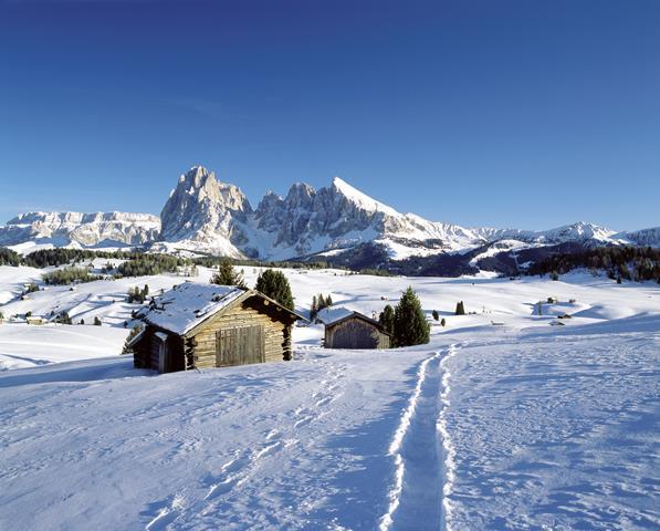 Im Winter verwandeln sich die großflächigen Almen der Seiser Alm in ein romantisches Skigebiet, Foto SMG, Clemens Zahn