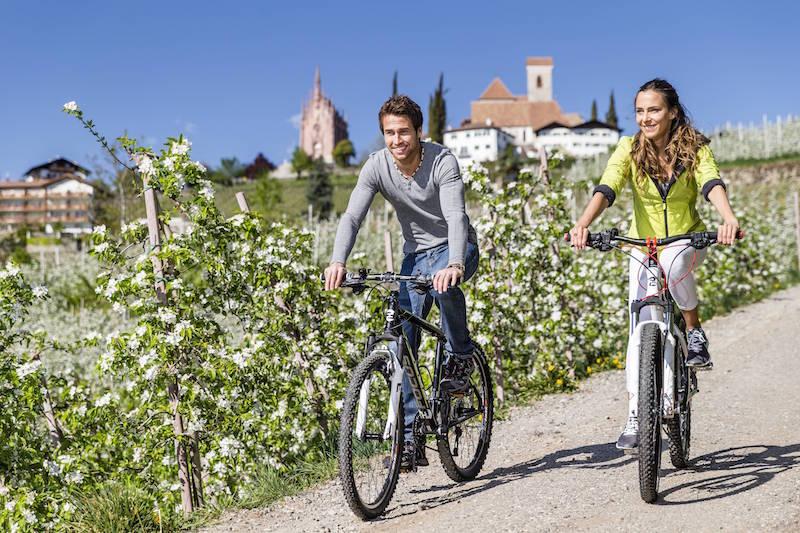 Von Anfang April bis Mitte Mai ist ganz Schenna ein Meer von Apfelblüten und duftendes Terrain für Genussradler. Bildnachweis: Tourismusverein Schenna/Klaus Peterlin