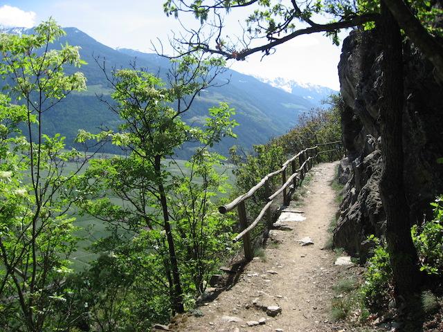 """""""Wallburgweg"""", es bieten sich herrliche Blicke in den oberen Vinschgau, Bild: Heidi Kjaer, eigenes Foto"""