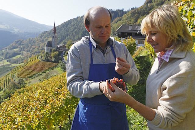 Sudtirol, Roter Hahn, Urlaub auf dem Bauernhof, Herbst, Feldthurns, Schrambach, Hofer Hof, Familie Anton Pliger, Weinberg,