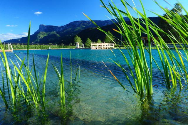 Das Wasser im Naturbad wird täglich mit Dolomitgestein gereinigt: Foto: Naturbad Gargazon