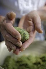 Das rezept der handgemachten Spinatnocken ist oft ein gut gehütetes Geheimnis der Bäuerin, Foto Roter Hahn