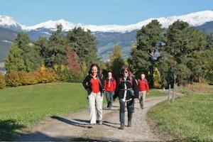 Wandern gehört genauso zum Törggelen wie die zünftige Einkehr, Foto: Oswald Stimpfl
