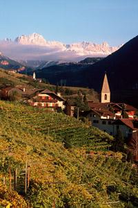 Eines der bekanntesten Weinanbaugebiete in Südtirol ist das in St. Magdalena bei Bozen.  Foto: Verkehrsamt Bozen