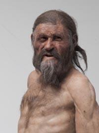 Einer der Höhepunkte der Ausstellung ist die neue Rekonstruktion von Ötzi, angefertigt von den Brüdern Andrie und Alfons Kennis aus den Niederlanden. Die Wahrscheinlichkeit ist groß, dass Ötzi so ausgesehen hat. - Foto: Südtiroler Archäologiemuseum/Ochsenreiter