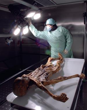 Nach wie vor wird die Mumie von Fachleuten untersucht. Am Ötzi ist noch lange nicht alles erkundet. - Foto: Südtiroler Archäologiemuseum