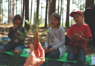 Abenteuerspielplatz Wald: Südtiroler Familienhotels führen Kinder zur Natur