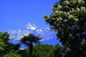 Aussicht auf die Meraner Berge bieten die Südtiroler Verwöhnhotels