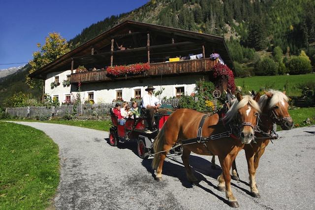 Vom Hotel aus lassen sich gemütliche Ausflüge in die Bergwelt unternehmen.