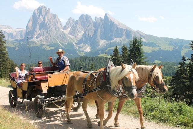 Gemütliches Vergnügen: Kutschfahrt mit Laurin Demet über die Seiser Alm, Foto: Heiner Sieger