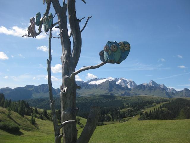 Lusitige Eulen begleiten den Blick auf die Königin der Dolomiten, den Gipfel der Marmolada, Foto: Heiner Sieger