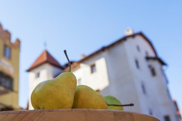 Die im Obervinschgau autochthone Palabirne ist neben ihrer Heilwirkung auch für ihren feinen Karamellgeschmack bekannt. Bildnachweis: Vinschgau Marketing/Frieder Blickle