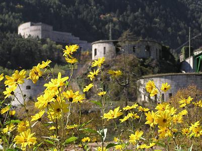 Die ehrwürdige Festung ist immer einen Besuch wert; Foto: Fortezza