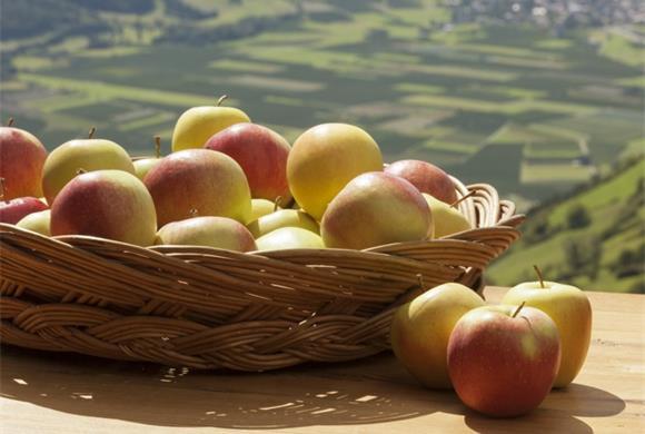 Im Hernst spielen die Äpfel in Schlanders die Hauptrolle; Foto: TV Schlanders