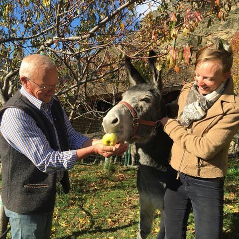 Frans und Hilde Van den Dries mit einem ihrer Weinberg-Esel; Foto: Albin Thöni/schönessüdtirol.de
