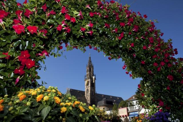 Blumenpracht am Waltherplatz in Bozen; Foto: TV Bozen