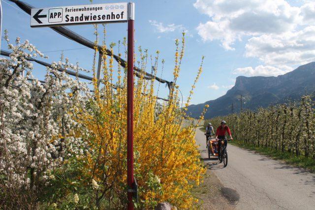 Der Sandwiesenhof liegt nicht nur inmitten von Obstbäumen sondern auch direkt an an einem herrlichen Fahrradweg, Foto: Heiner Sieger/schönessüdtirol.de